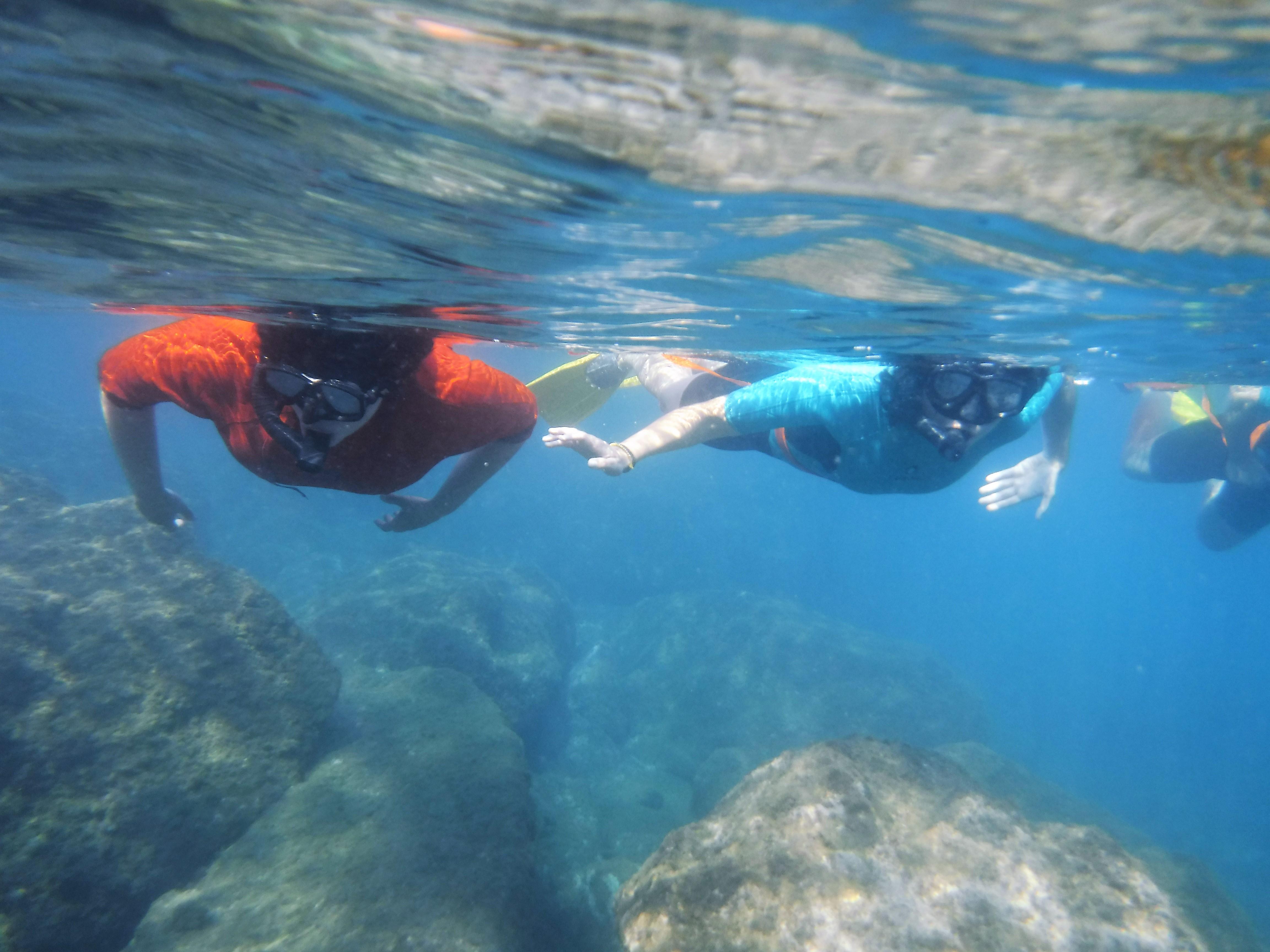 snorkel-bcn