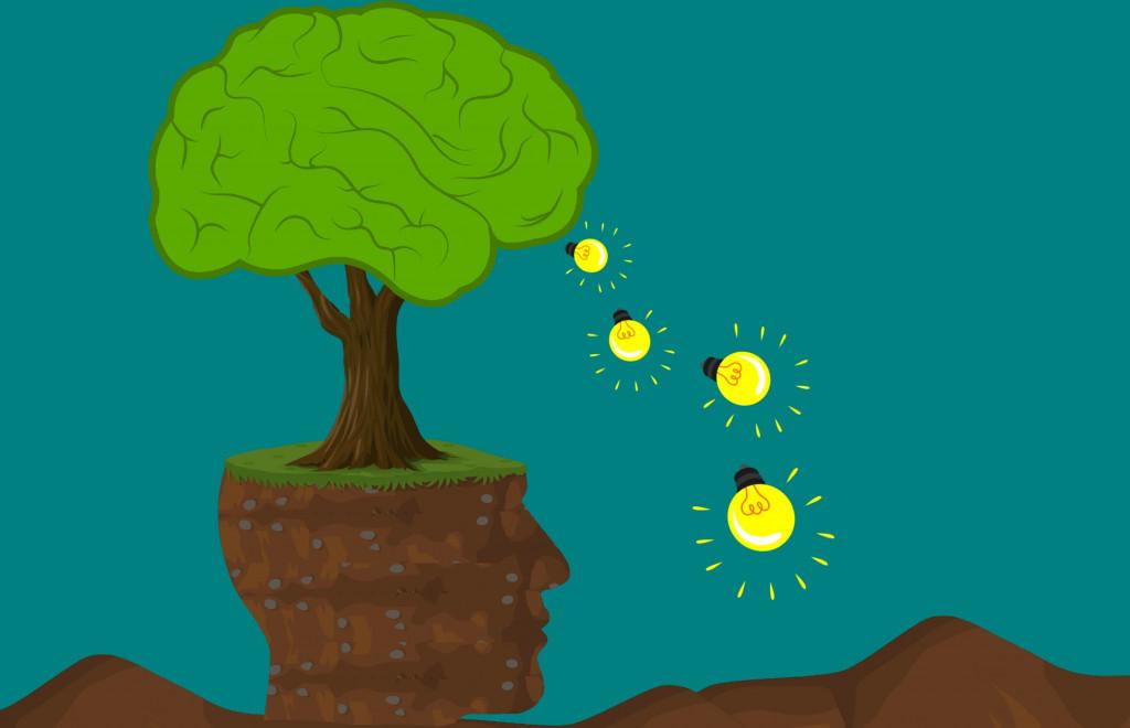 eines-i-recusos-educacio-ambiental
