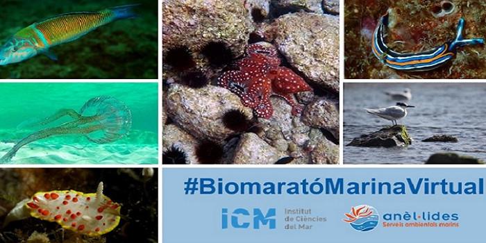 biomarato-marina-virtual