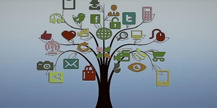ducacio-ambiental-a-les-xarxes-socials