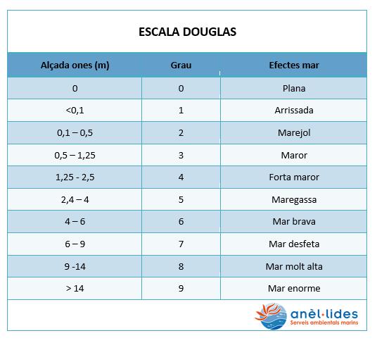 escala-douglas-anellides