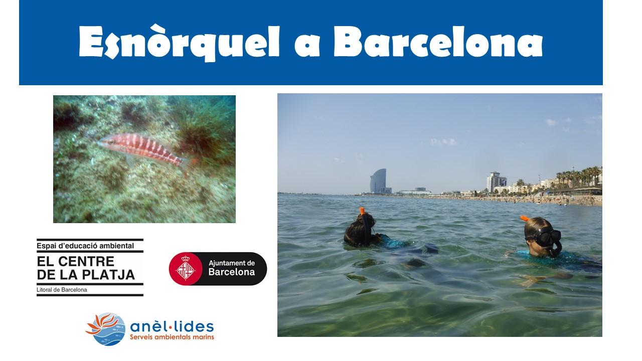 esnorquel-a-barcelona