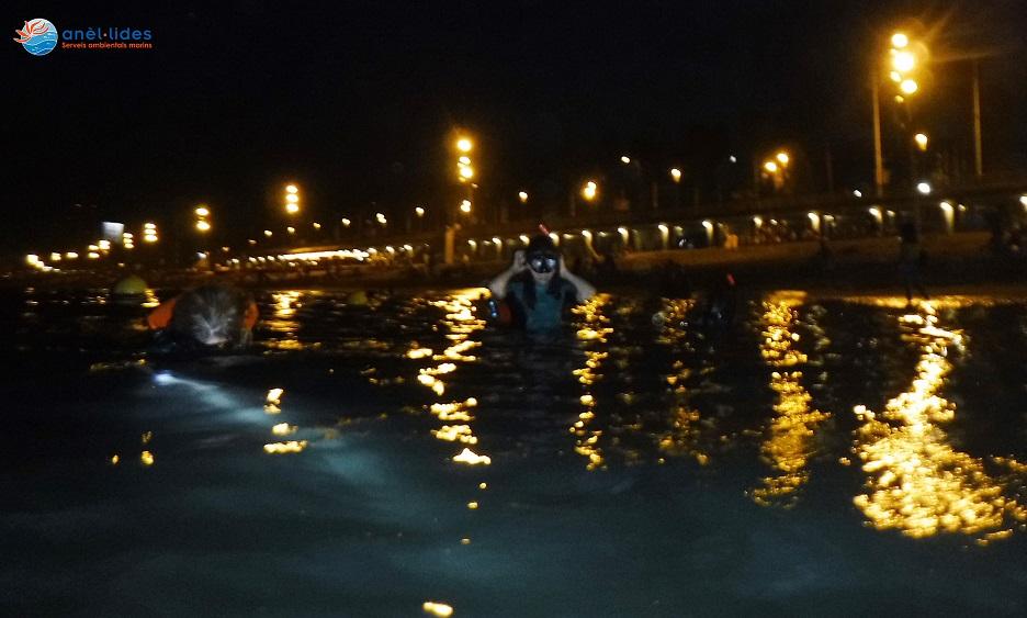 snorkel-nocturn