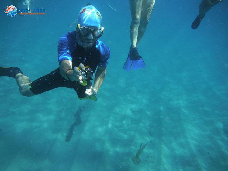 snorkel-vies-braves-calella