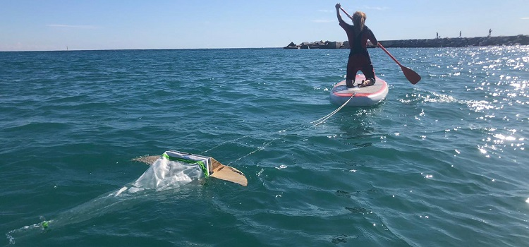 surfing-for-science